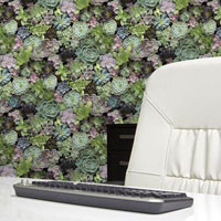 Rinekwall photographic wallpaper and wallcoverings.