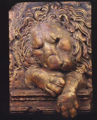 Casey Collection Sleeping Lion  Search Results