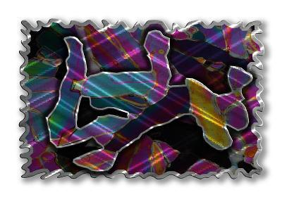 All My Walls Metamorphosis Blu, Grn, Violet, Yellow, Pnk, Orange, Silver, Blk Search Results
