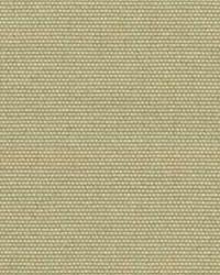 Polyester Taffeta 1811 by