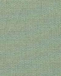 Polyester Taffeta 1813 by