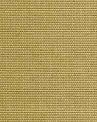 Polyester Taffeta 1814 by