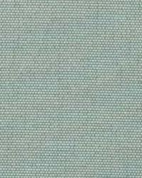 Polyester Taffeta 1835 by