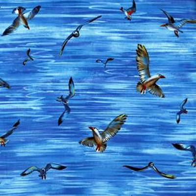 Michael Miller Fabrics Seagulls Blue Search Results