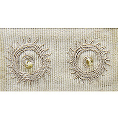 Brimar Trim 2 in Embroidered Tape  SHL Search Results