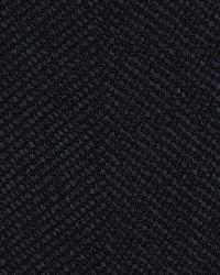 Covington Edgewood 593 Indigo Fabric