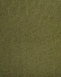 Kanvastex 297 Windsor Green by