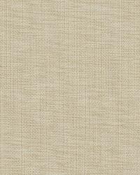 Covington Nevis 107 Canvas Fabric