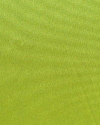 Polyester Taffeta 1846 by