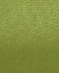 Polyester Taffeta 1851 by