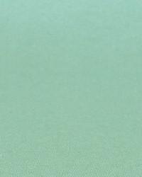 Polyester Taffeta 1861 by