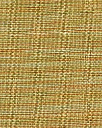 Rainbow Moss by