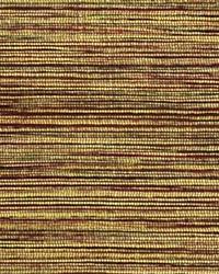 Rainbow Oak by