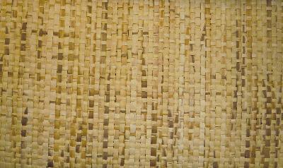 Fabricut Fabrics Tatami Raffia Rattan Search Results