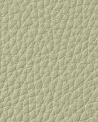 Torino Lemongrass Leather by