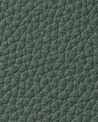 Torino Fir Leather by