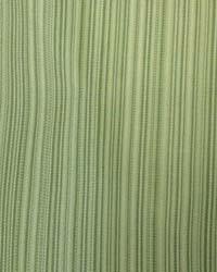 Emery Stripe Lime by