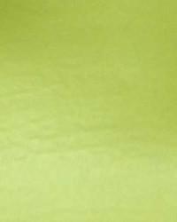 Vinyl Bright Green by