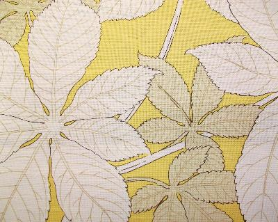 Kasmir Autumn Leaves Yellow Search Results