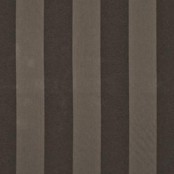 Kasmir Bellagina Stripe Coffee Bean Search Results