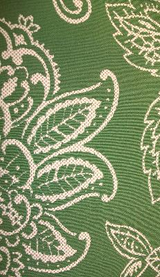 Kasmir Bengal Paisley Grass Search Results