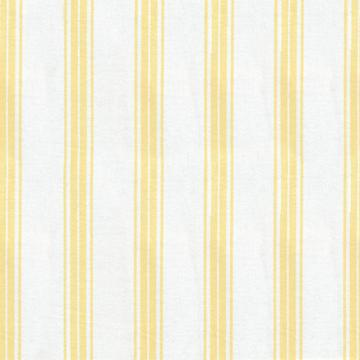 Kasmir Tipler Stripe Buttercup Search Results