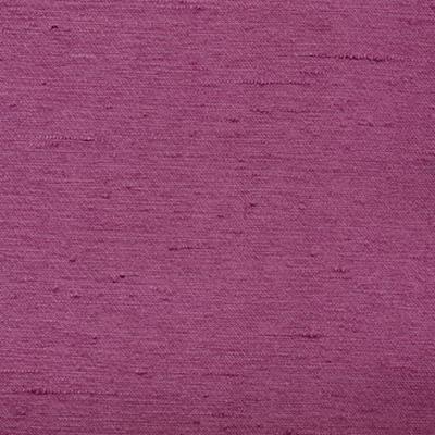 Kasmir Toccata Violet Search Results