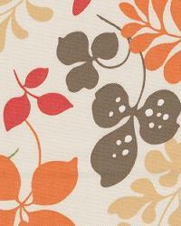 Foxy Leaf Chocolate by