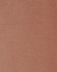 Novel Vancouver Velvet Blush 38911 Fabric