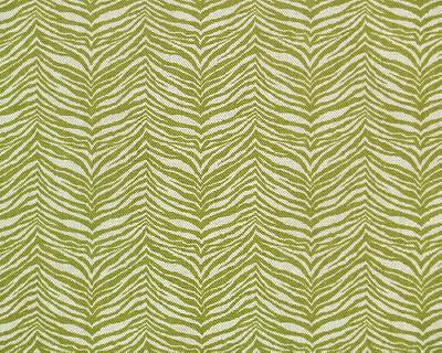 Premier Prints Little Tiger Olive Linen Search Results