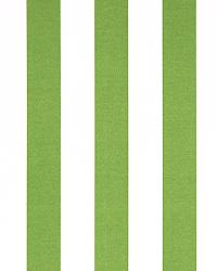 Outdoor Stripe Bay Green by