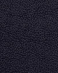 Robert Allen Loggins Marine Fabric