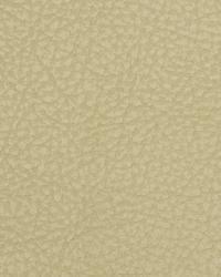 Robert Allen Loggins Parchment Fabric