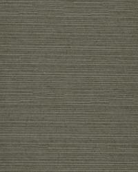Robert Allen Natural Slub Rain Fabric