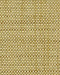 Robert Allen Panel Weave Raffia Fabric