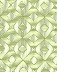 Schumacher Fabric Amazing Maze Palm Fabric