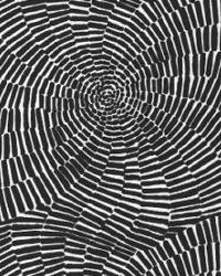 Schumacher Fabric Sonriza Print Black Fabric