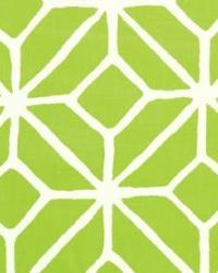 Schumacher Fabric Trellis Print Apple Fabric