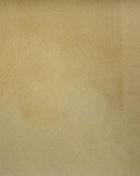 Global Textile Bruges 33 Biscuit Velvet Fabric