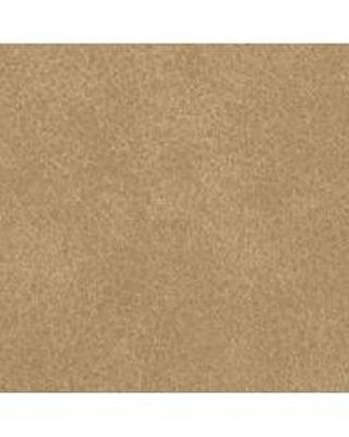 Bolta-Boltatex Wallcovering Coach Prarie Dog Search Results