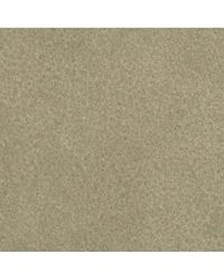 Bolta-Boltatex Wallcovering Coach Yucca Tree Search Results