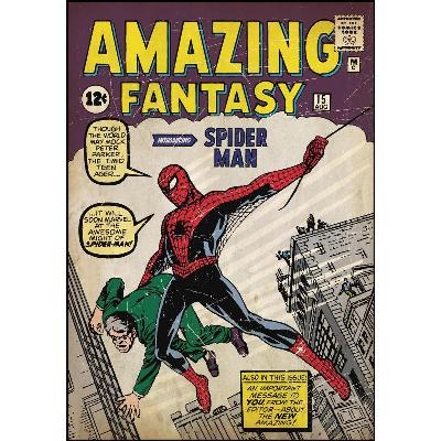 York Wallcovering Comic Book Cover - Spiderman #1 Peel & Stick Comic Book Cover Multi Spiderman