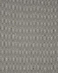Maxwell Fabrics Anchor Watch 509 Grey Matter Fabric