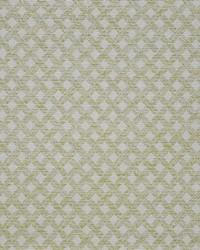 Maxwell Fabrics Arbour 917 Lime Fabric