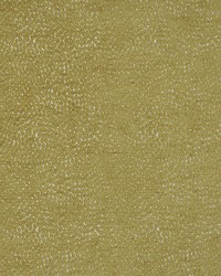 Maxwell Fabrics Bitsy 816 Saffron Fabric