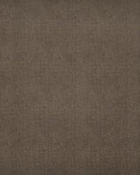 Maxwell Fabrics Baxter-ess 100 Earth Fabric
