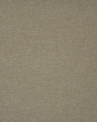 Maxwell Fabrics Broome-ess 300 Cannoli Fabric