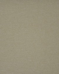 Maxwell Fabrics Broome-ess 345 Biscuit Fabric