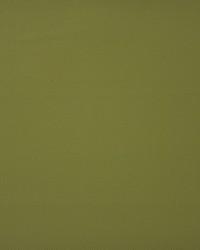 Maxwell Fabrics Bandit 729 Android Fabric