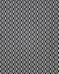 Maxwell Fabrics Birds Eye 624 Pongo Fabric
